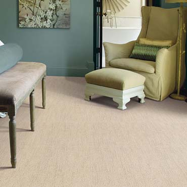 Caress Carpet by Shaw | Fort Wayne, IN